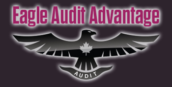 Eagle Audit Advantage Inc.